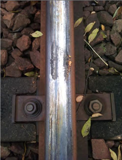 Résidus de feuilles écrasées sur rail