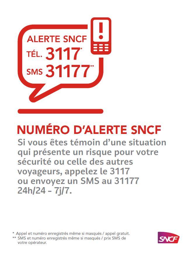 Le Numero D Alerte 3117 Et Sms 31177